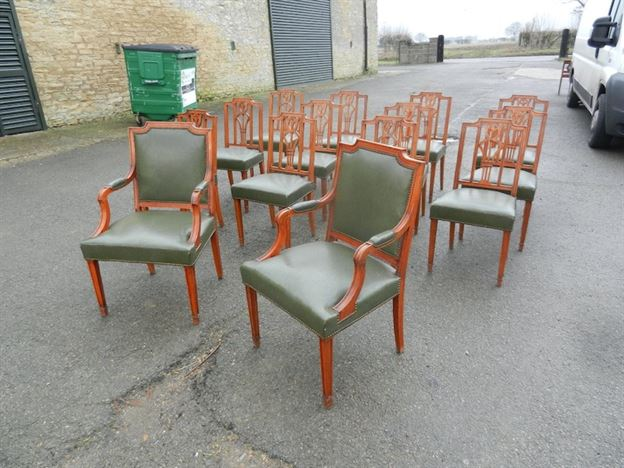 Long Set Of Fourteen Georgian Sheraton Revival Antique Dining Chairs - ANTIQUE FURNITURE WAREHOUSE - Long Set Of Fourteen Georgian Sheraton