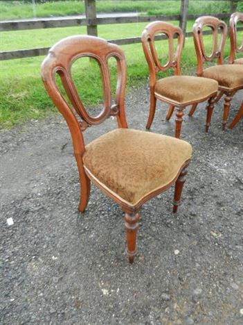 Set Six Victorian Dining Chairs - Set 6 Mid Victorian Admiralty Back Mahogany Dining Chairs