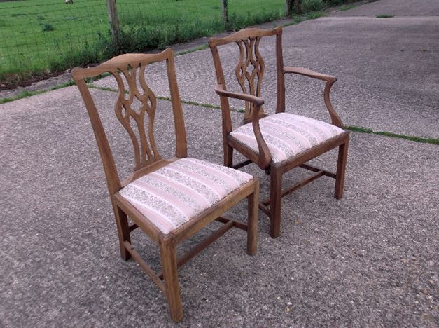 Antique Dining Chairs Set 12 - Twelve Country Chippendale Dining Chairs Including Two Carvers
