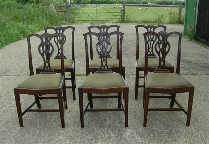 Antique Georgian Dining Chairs