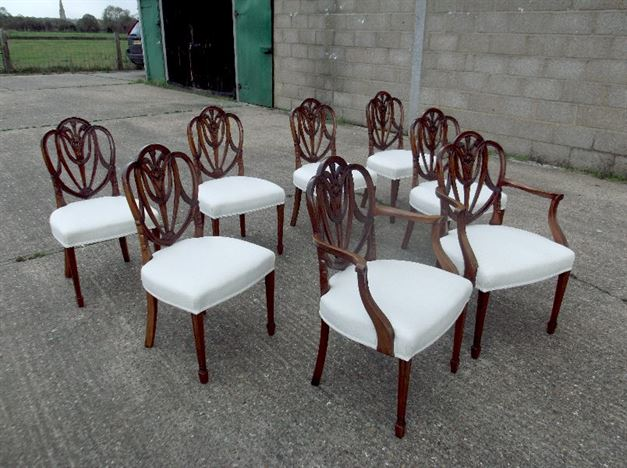 Antique Mahogany Dining Chairs - Set Eight 8 Georgian Hepplewhite Revival  Mahogany Dining Chairs With Carvers - ANTIQUE FURNITURE WAREHOUSE - Antique Mahogany Dining Chairs - Set
