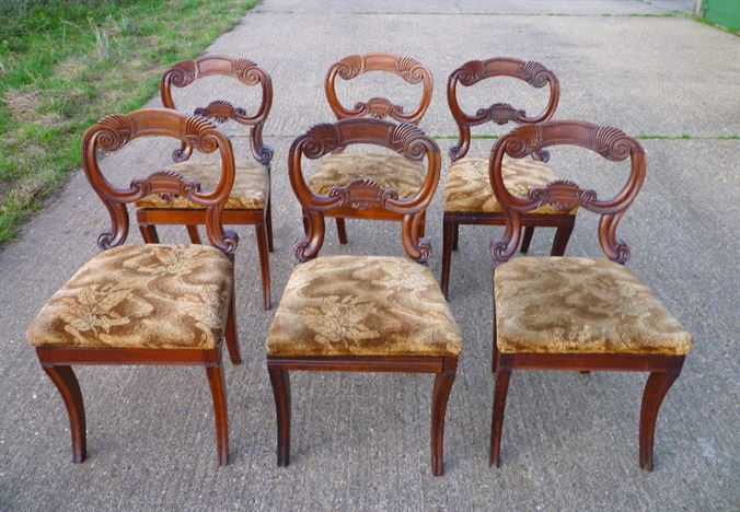 Antique Set Regency Chairs - Set Of Six 6 Regency Rosewood Dining Chairs  With Balloon Backs - ANTIQUE FURNITURE WAREHOUSE - Antique Set Regency Chairs - Set Of