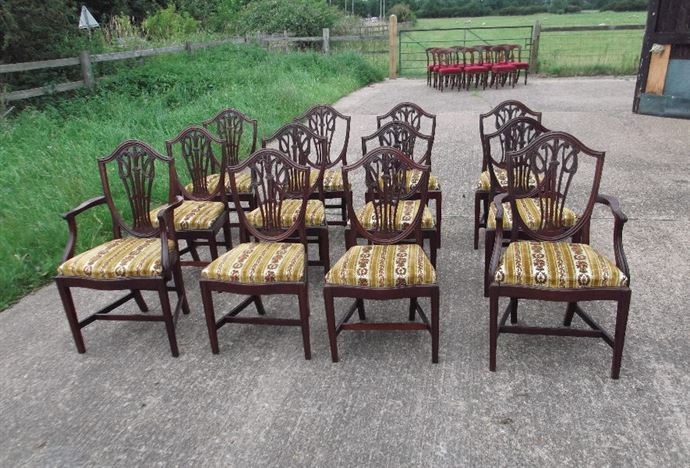Large Set of Antique Georgian Revival Dining Chairs - Set Of 12 Twelve  Hepplewhite Georgian Revival Shield Back Dining Chairs - ANTIQUE FURNITURE WAREHOUSE - Large Set Of Antique Georgian