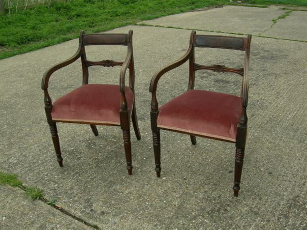 Pair Georgian Chairs - Pair Of Georgian Mahogany Carver Dining Chairs - ANTIQUE FURNITURE WAREHOUSE - Pair Georgian Chairs - Pair Of