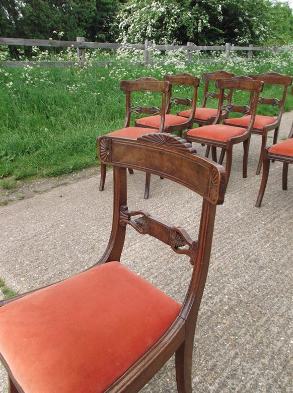 Set 8 Antique Dining Chairs - Eight Regency Mahogany Sabre Leg Bar Back Dining Chairs
