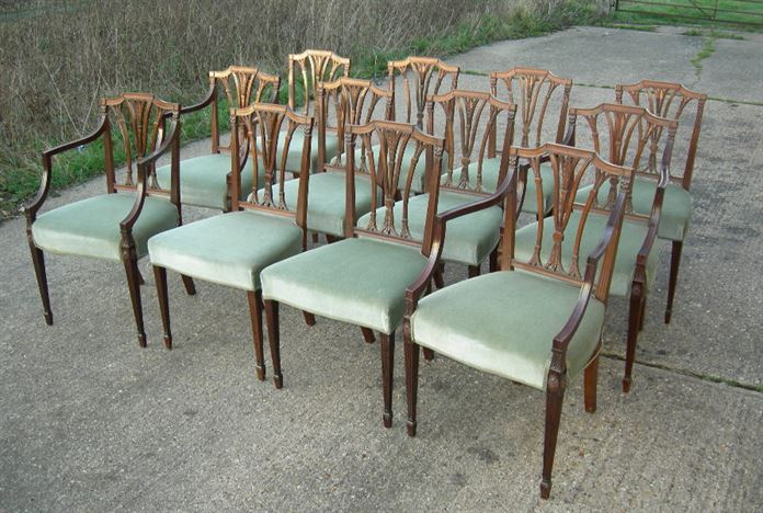 Set of 12 antique dining chairs - Set of 12 twelve Georgian Revival  mahogany dining chairs in the Regency manner - ANTIQUE FURNITURE WAREHOUSE - Set Of 12 Antique Dining Chairs - Set