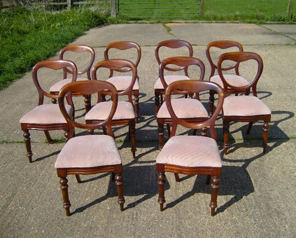 Set of Ten Antique Dining Chairs - Set of 10 ten Victorian mahogany balloon  back dining chairs - ANTIQUE FURNITURE WAREHOUSE - Set Of Ten Antique Dining Chairs - Set